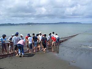 地引網漁体験